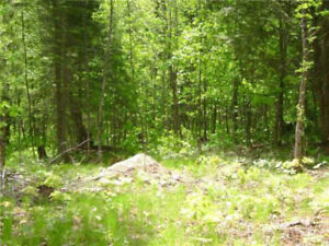 Land for Sale, hydro installed - Port Loring (Unorganized Twsp)