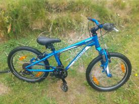 Specialized bike 20inch wheels