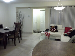 NEW FURNISHED BASEMENT CLOSE TO FOREST GLEN SHOPPING CENTRE. Kitchener / Waterloo Kitchener Area image 4