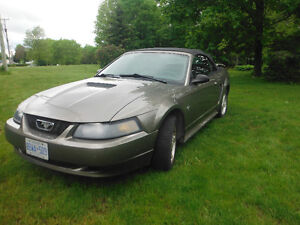 2002 Ford Mustang Convertible Great Condition