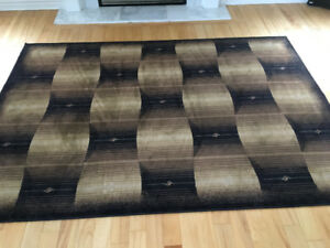 Beautiful Area Rug (approximately 5'x7') one year old.