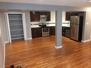 --BEAUTIFUL BASEMENT SUITE: UTILITIES INCLUDED--