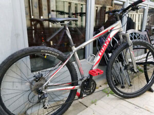 GIANT MOUNTAIN Bikes (29er and 24inch) - Father and Son bikes