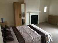 Lovely Double Room to rent in Downton