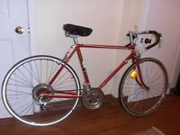 Supercycle 10 speeds in top shape