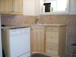 Comfortable ONE BR LWR APT - Centrally Located