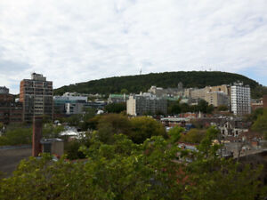 Beautiful 1 Bedroom Apartment, Centerville, Montreal - November