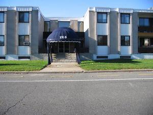 Extra large 2-bedroom Apartment on Superb Street