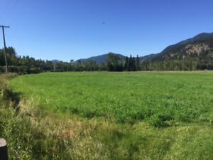 Farm land for sale in Clearwater, BC
