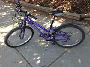 12.5 in. Norco mountain bike