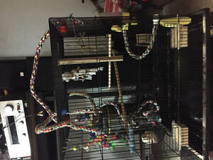 Bird Cage With Everything You Need And More !!!