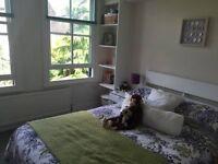 Double room with en suite in beautiful Wandsworth flat