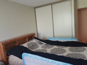 Captain bed (double size) and mattress