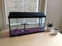 Fish Tank / Aquarium – 80 Litres with Accessories