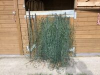 50 metres poultry electric fence netting