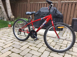 Youth 24 inch Raleigh Tracker bike - Red