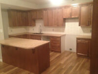 New 2 Bedroom 1 Bathroom Plus Media Room Level Entry Half Duplex