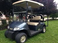 Private Golf Cart Rental in Sherkston Shores. $55.00 Day