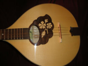 IRISH BOUZOUKI SOLID WOOD MADE N ROMANIA BRAND NEW+GIG BAG  $360