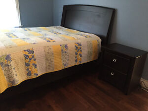Bed Frame and Dresser set