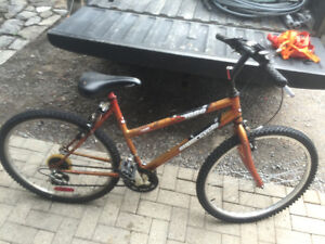 cheap supercycle