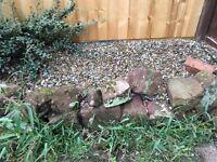Free Rockery Stones