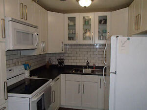 4 Bedroom & Finished Basmt _Only $1,395 (or $700 /roommate)