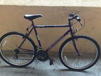 Dynamix Men Mountain Bike