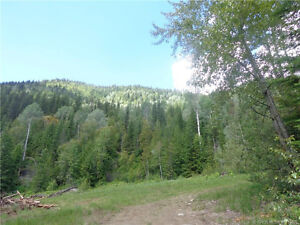 960 Acres outside Salmo! (DL 1237 Hwy 6)