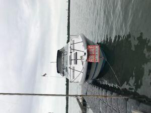 27 Bayliner Cabin Cruiser