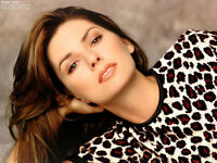 "Shania Twain Oct.11 ACC Best Seats ""Floor Level Dead Centre"""
