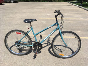 SuperCycle Ascent 12-speed Bicycle