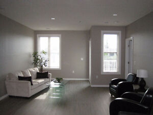 Newer Condo Downtown, March 1st, One Bedroom Plus Den