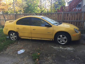 2003 Yellow Dodge Neon Windsor Region Ontario image 3