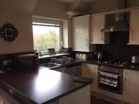 Luxury 1 Bedroom Flat for Rent in SA1 Swansea - £425pcm