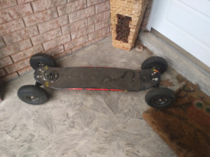 Landboard Skateboard