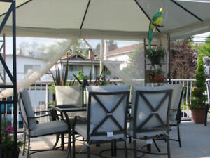 Patio Table and 6 chairs with cushions