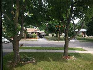 2 furnished BDRMs available in newly renovated house near UW/WLU