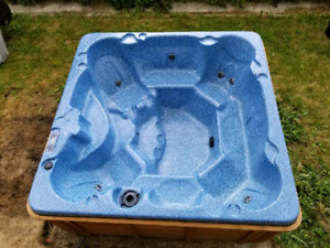 Great hot tub, mint condition