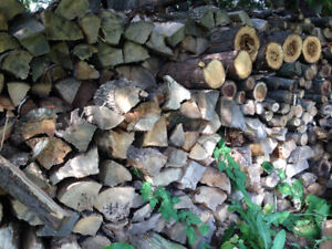Premium- Smoker and BBQ Woods, Firewood, Kindling