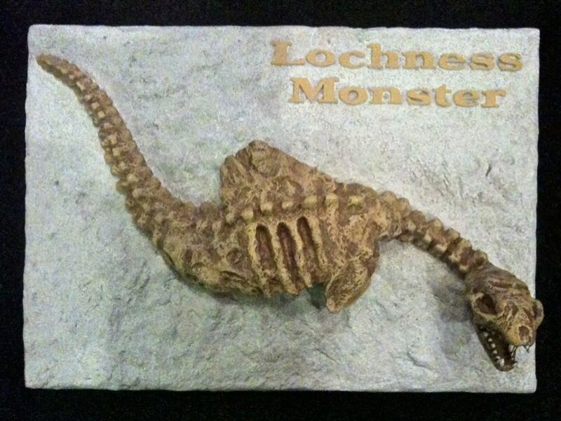 Lochness Monster, Fossil Sculpture, Very Detailed