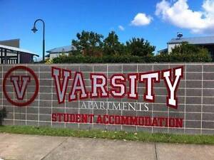 VARSITY APARTMENTS! TWO ROOMS FOR RENT Sippy Downs Maroochydore Area Preview