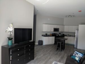 ALL INCLUSIVE Room for 4 months Subletting in brand new Condo