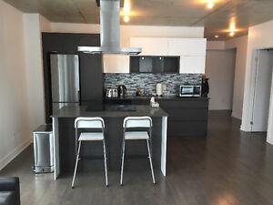 GRIFFINTOWN. Magnifique / Gorgeous condo 41/2 meuble / furnished