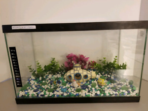 "5 Gallon ""Spong Bob with Sub"" Aquarium"