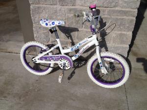 Junior Girls Mountain Bike for Sale