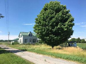4 Bedroom Farm House For Rent In Roslin Area