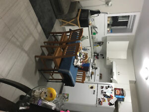 $1200 - 1 BDRM BSMT - South Slope/Metrotown Area