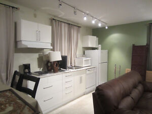 Furnished 1bed & den,1 bath, short term, available