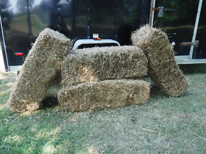 STRAW 10 bales for $40 or 5 for $25, St George